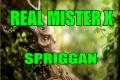 Una creatura irlandese spaventosa: Lo Spriggan
