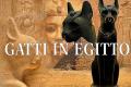 Tradizioni misteriose Egizie: I gatti mummificati