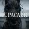 Un mostro che ormai è leggenda: Il terribile Chupacabras