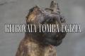 Ritrovata una tomba egizia a Saqqara perfettamente conservata