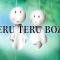 Un simpatico amuleto giapponese: Teru Teru Bozu