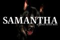 Samantha: Racconto breve di Gaetano Antonio Riotto
