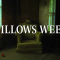 Willows Weep: Una delle case ritenute più infestate d'America